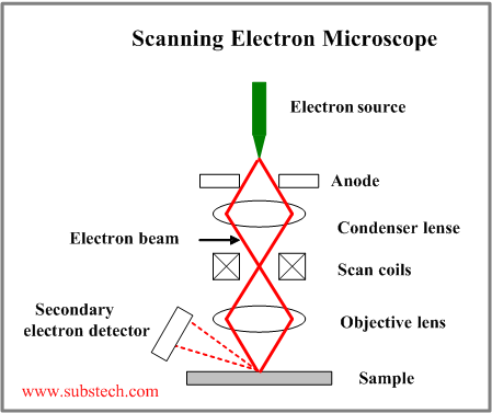 Scanning electron microscope substech electron microscopeg ccuart Image collections